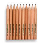 Geocaching pencil 10 pcs